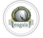 EAGALA horse / human collaboration - EAP and EAL programs at Berkshire HorseWorks
