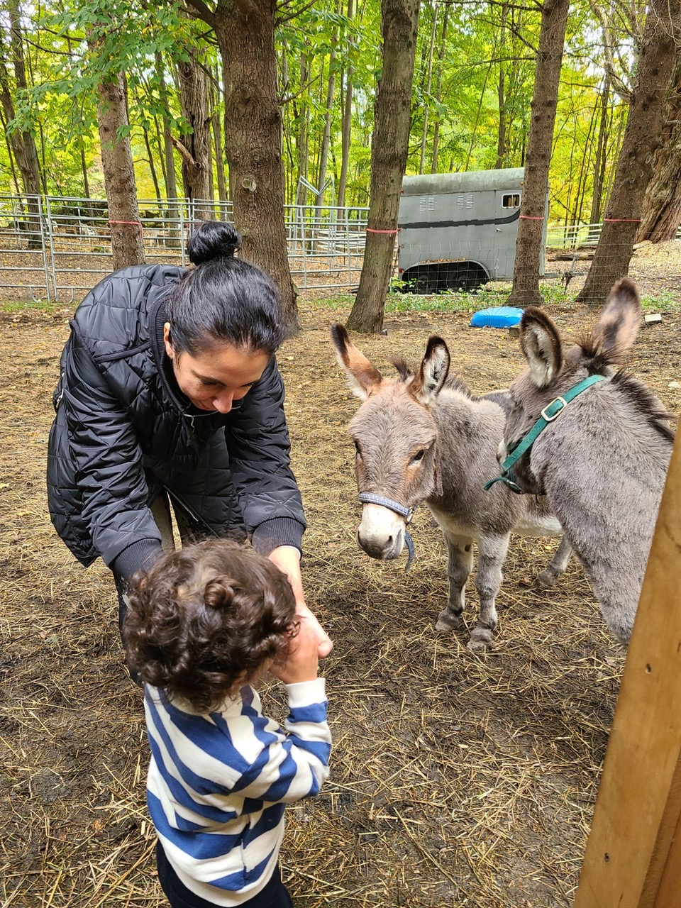 Ranch-Family-101-Mother-Child-and-donkey