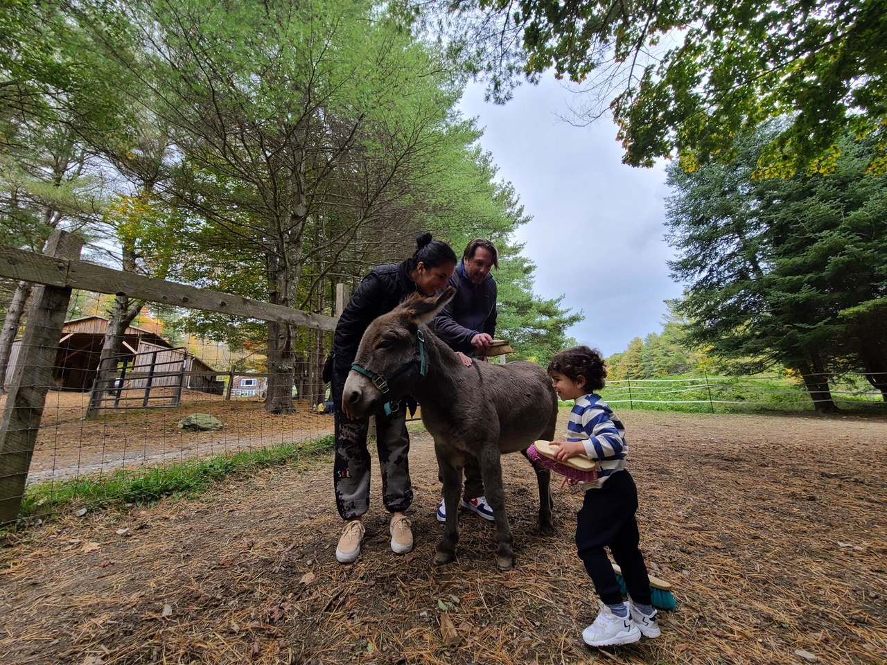 BHW Ranch Family 101: Family with Donkey