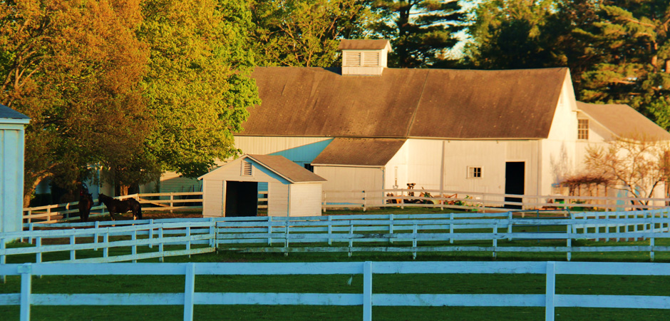 Berkshire-horseworks-barn