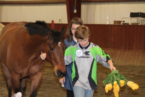 Equine Therapy for Families: Children, Adolescents, Teens, Adults