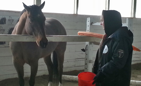 Equine assisted therapy can assist individuals, couples, families and groups.