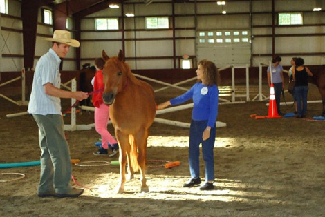 Learning with horses at Berkshire HorseWorks