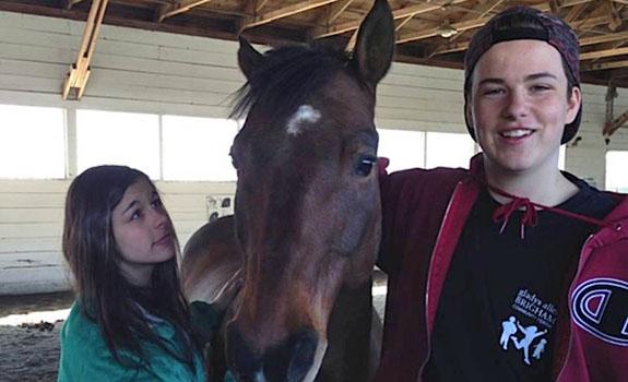 Team Building Exercises at Berkshire HorseWorks