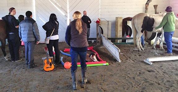 Team Building at Berkshire HorseWorks